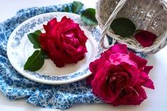 Stilleben med rosor och korgen Arkivbilder