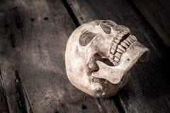 Stilleben med skallemänniskan arkivfoton