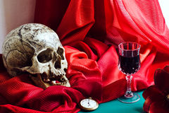 Stilleben med skallen i stilen av vanitas Royaltyfri Foto