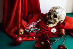 Stilleben med skallen i stilen av vanitas Royaltyfri Fotografi