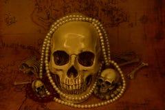 Stilleben med skallen, selektiv fokus Arkivfoto