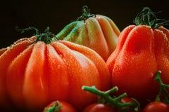 Stilleben med stora bullÂ's-höra-tomater på svart bakgrund Arkivfoto