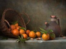 Stilleben med tangerines royaltyfri bild