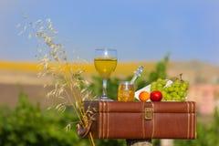 Stilleben med vin från Arkivfoton