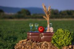 Stilleben med vin från Royaltyfria Foton