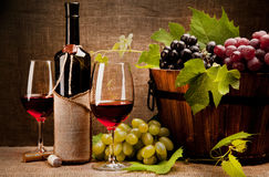 Stilleben med vinflaskor, exponeringsglas och druvor Royaltyfri Fotografi