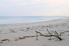 Stilleben på en Sandy Seashore - oändlig fred på den Uncrowded stranden arkivbild