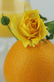 Stilleben - saftig apelsin Arkivfoto