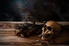 Stilleben som röker den mänskliga skallen med cigaretten på trätabellen Fotografering för Bildbyråer