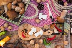 Stilleben: Stycken av vita champinjoner, peppar och kryddor Royaltyfri Foto