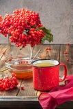 Stillebenbär av en viburnum i ett exponeringsglas och rånar av varm te och honung fotografering för bildbyråer