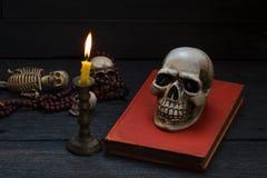 Stillebenfotografi med den mänskliga skallen och mala på wood backgr Arkivfoton