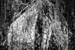 Stillebenhem Arkivfoto