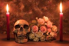 Stillebenmålningfotografi med den mänskliga skallen, rosa och candl Arkivbild