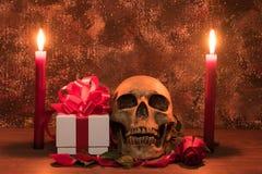 Stillebenmålningfotografi med den mänskliga skallen, gåva, steg Royaltyfri Fotografi