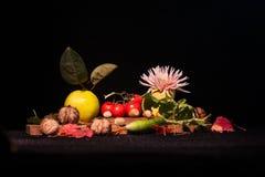 Stillebensammansättning med frukter och grönsaker Arkivfoto