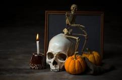 Stillebenskalle med den lilla mänskliga skallen Royaltyfria Bilder