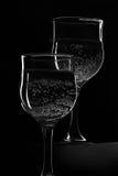 Stillebenvinglas som mousserar drinken Arkivbilder