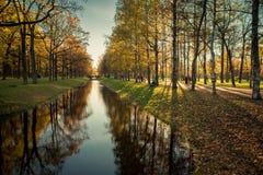 Stilled autumn shadows. Autumn warm, sunny days past, Autumn Walk in the Park, stilled shadow Royalty Free Stock Image