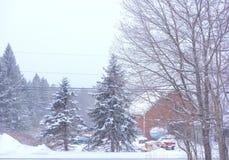 Stiller träumerischer Winterschneesturm Stockfotos