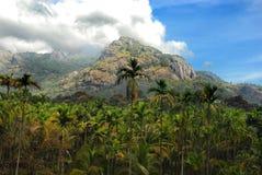 Stilles Tal-Nationalpark Lizenzfreies Stockbild