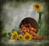 stilleven dat uit zonnebloemen bestaat Stock Fotografie