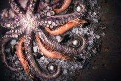 Stilleven Dichte Omhooggaand van Tentakels van Ruwe Octopus en Garnalen die op Koud Metaal liggen royalty-vrije stock foto's