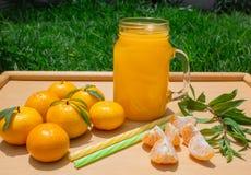 Stilleven 1 Een transparante mok met een handvat met vers gedrukt mandarijnsap En verse mandarijnen stock afbeelding