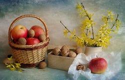 Stilleven met appelen en noten Royalty-vrije Stock Foto