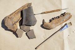 Stilleven met archeologische hulpmiddelen en vondsten stock fotografie
