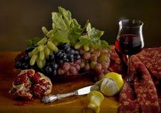 Stilleven met druif, citroen, granaatappel en wijn Royalty-vrije Stock Afbeeldingen