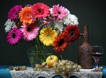 Stilleven met een boeket, een fruit en een rode wijn De madeliefjes van Transvaal Stock Fotografie