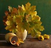 stilleven met esdoornbladeren Stock Foto