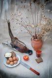 Stilleven met fazant Stock Afbeeldingen