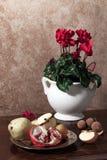 Stilleven met geraniums stock afbeelding