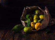 Stilleven met mandarijnen stock fotografie