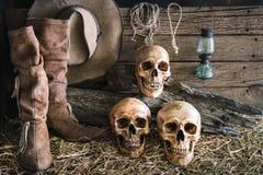Stilleven met menselijke schedel drie op schuurachtergrond Stock Foto's