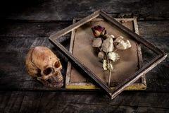 Stilleven met menselijke schedel en rozen droog in een omlijsting Stock Afbeelding
