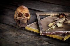 Stilleven met menselijke schedel en rozen droog in een omlijsting Stock Afbeeldingen