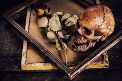 Stilleven met menselijke schedel en rozen droog in een omlijsting o Stock Afbeeldingen