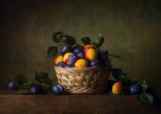 Stilleven met nectarines en pruimen Royalty-vrije Stock Afbeelding