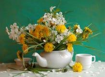 Stilleven met paardebloemen en bloeiwijze van CH Royalty-vrije Stock Foto's