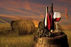 Stilleven met rode wijn Royalty-vrije Stock Foto's