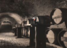 Stilleven met rode wijn Royalty-vrije Stock Afbeeldingen