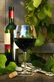 Stilleven met rode wijnfles en glas