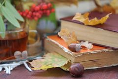 Stilleven met thee, boeken en bladeren in de herfst Royalty-vrije Stock Afbeelding