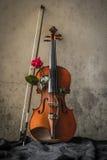 Stilleven met viool en rozenvalentijnskaart Stock Afbeelding