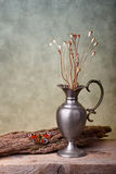 Stilleven met Vlinder royalty-vrije stock fotografie