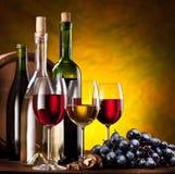 Stilleven met wijnflessen Stock Afbeeldingen