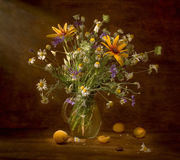 Stilleven met wildflowers en abrikozen royalty-vrije stock fotografie